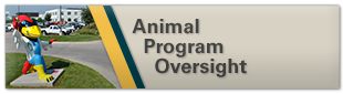 Animal Program Oversight