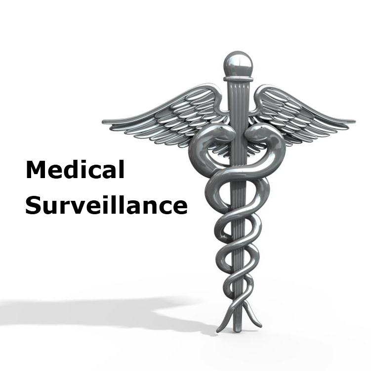 Animal%20Medical%20surveillance Holidays and Health