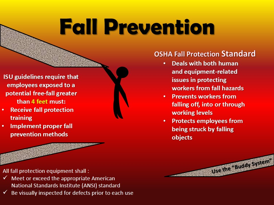 Fall Protection Guidelines