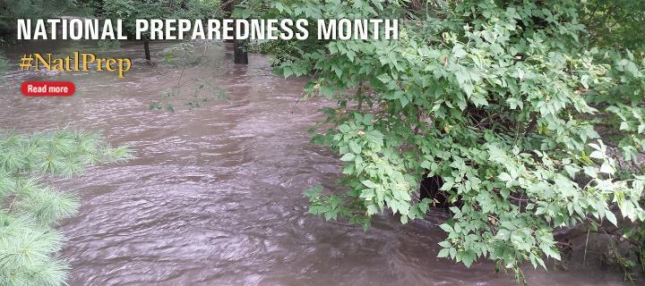 Week 1 Flood