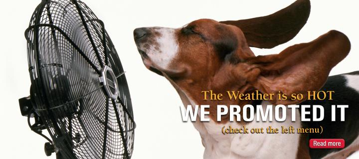 Weather Promotion